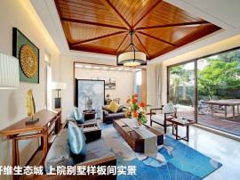 江东区域 CBD地段 开维生态城 一墅亲海 院藏国色